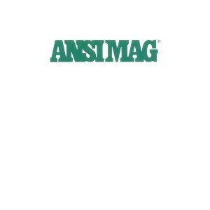 Ansimag Lined Magnetic Pumps