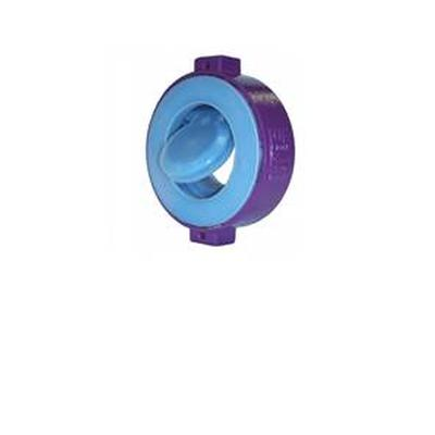 FL FLOW SWING CHECK VALVE
